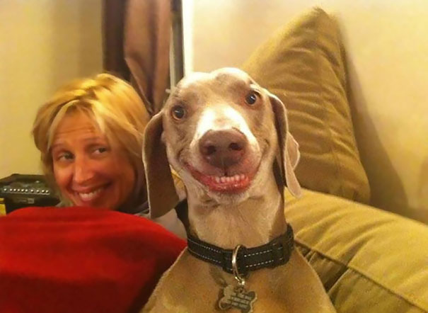 20 happy animals that will make you smile too.