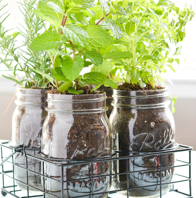 5 great ideas for herb planters