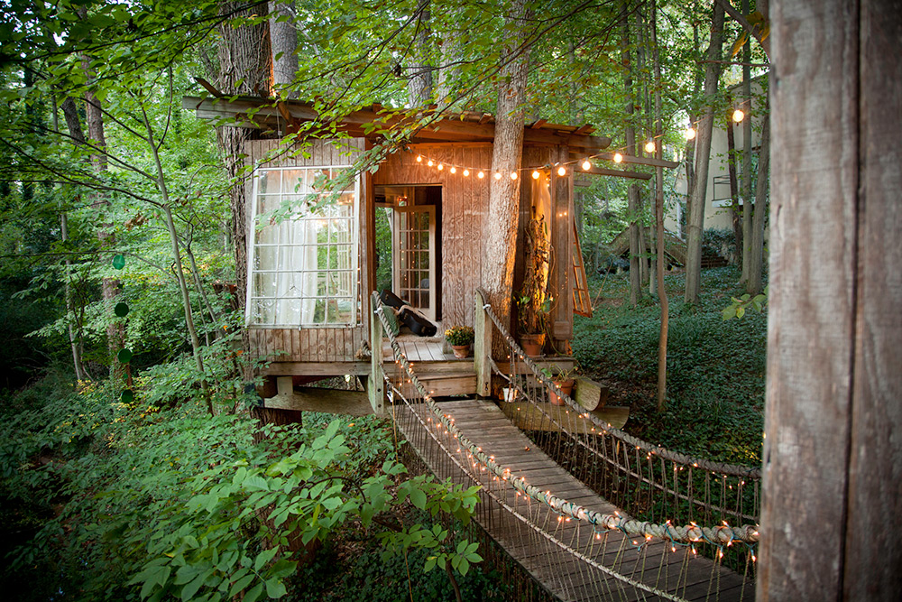 Circular Tree House life in a treehouse | ecotek green living