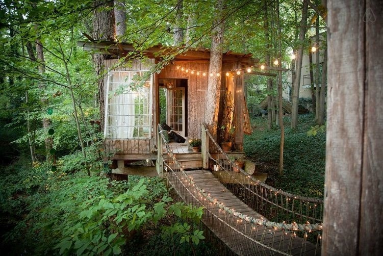 Life In a Treehouse