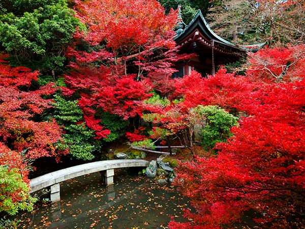 10 Όμορφες Τοποθεσίες για το Φθινόπωρο από Όλο Τον Κόσμο