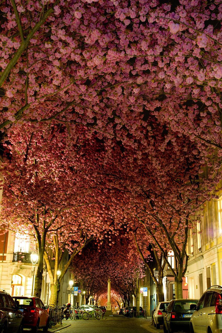 Bonn, Germany