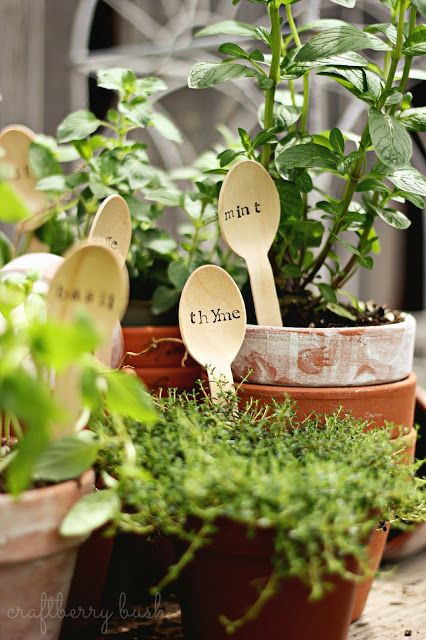 Craftberry Bush: Wooden Spoon Herb Markers: