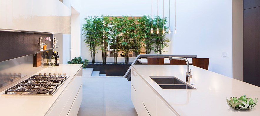Modern kitchen with a screen of plants