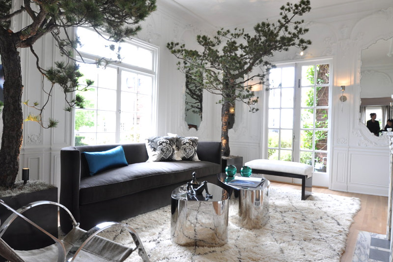 San Francisco living room with towering trees 10 Rooms With Elegant Indoor Plants