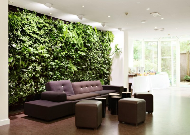 Wall of greenery in an indoor living area