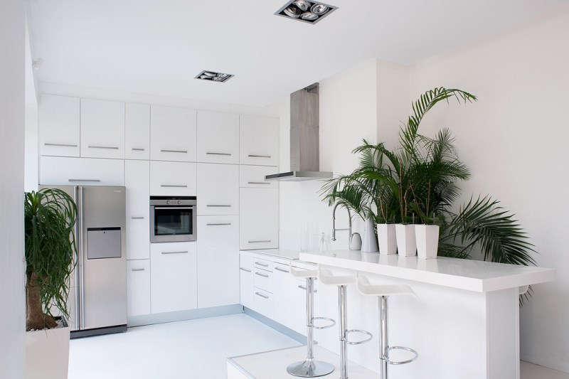 White kitchen with eye-catching indoor plants