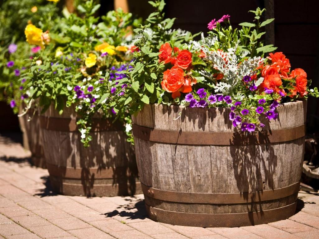iStock-3777830_barrels-in-garden-with-flowers_s4x3.jpg.rend.hgtvcom.1280.960