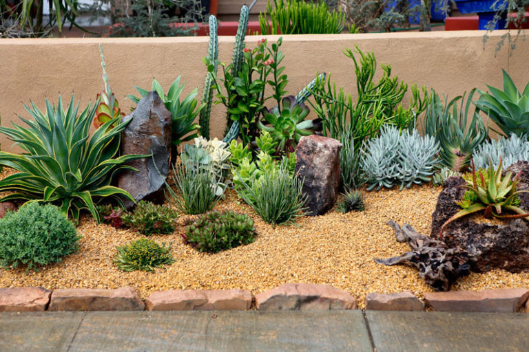 11 Inspirational Rock Gardens To Get You Planning Your Garden // The front yard of this home has been filled with rocks and an assortment of low maintenance, drought tolerant plants.
