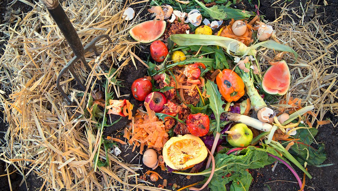 Image result for Compost