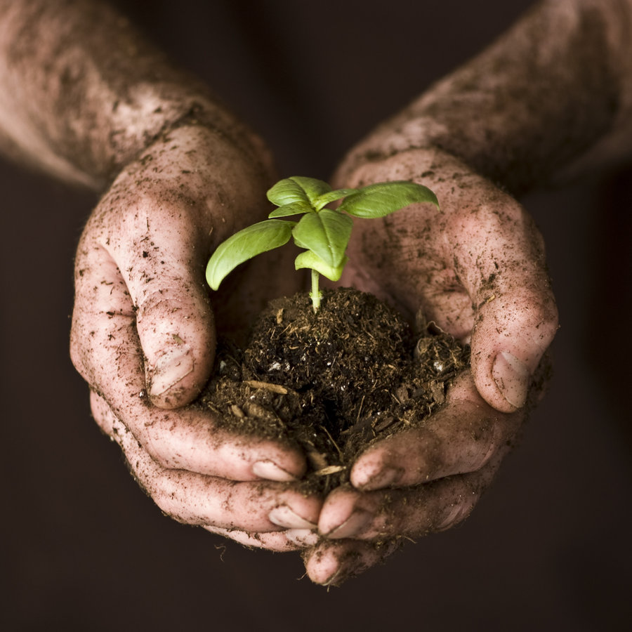 Image result for dirty hands