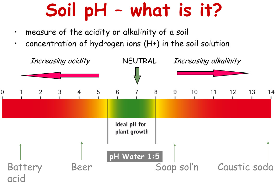 Image result for soil ph