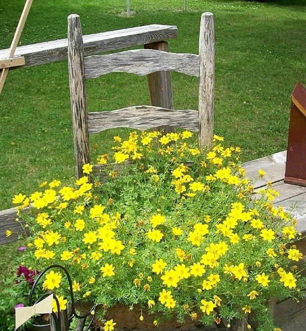 chiar planter flower combination