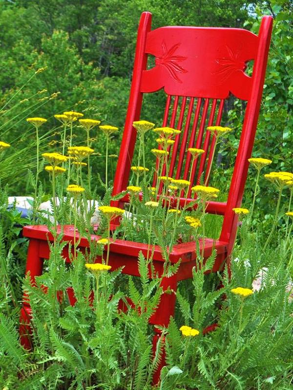 yarrow chair planter