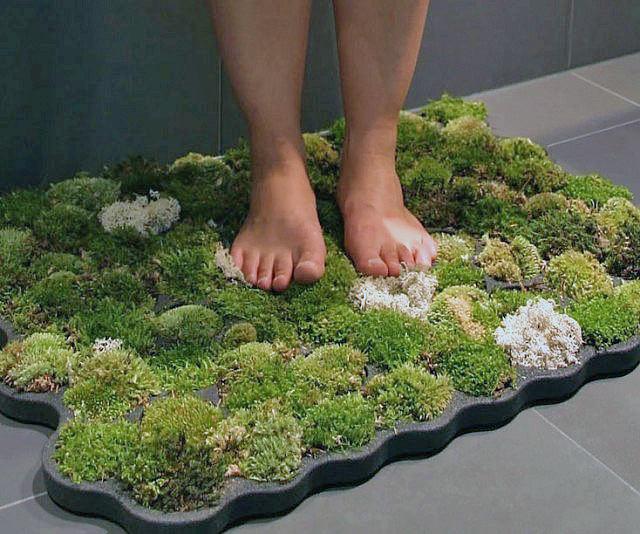 http://www.thegardenglove.com/wp-content/uploads/2017/10/Bath-shower-plants-15.jpg