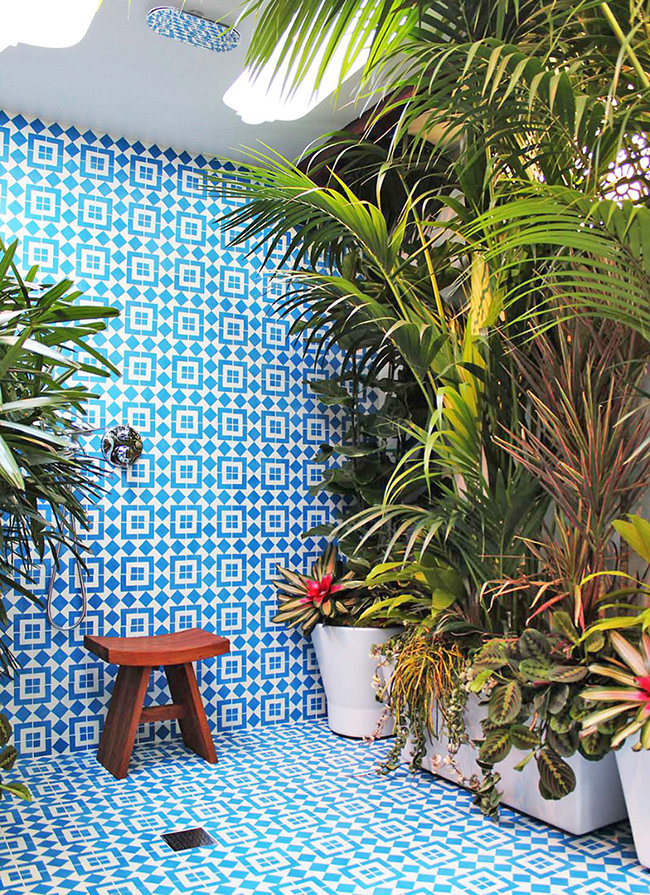 http://www.thegardenglove.com/wp-content/uploads/2017/10/Bath-Shower-Plants-How-to-Join-The-Trend-10.jpg