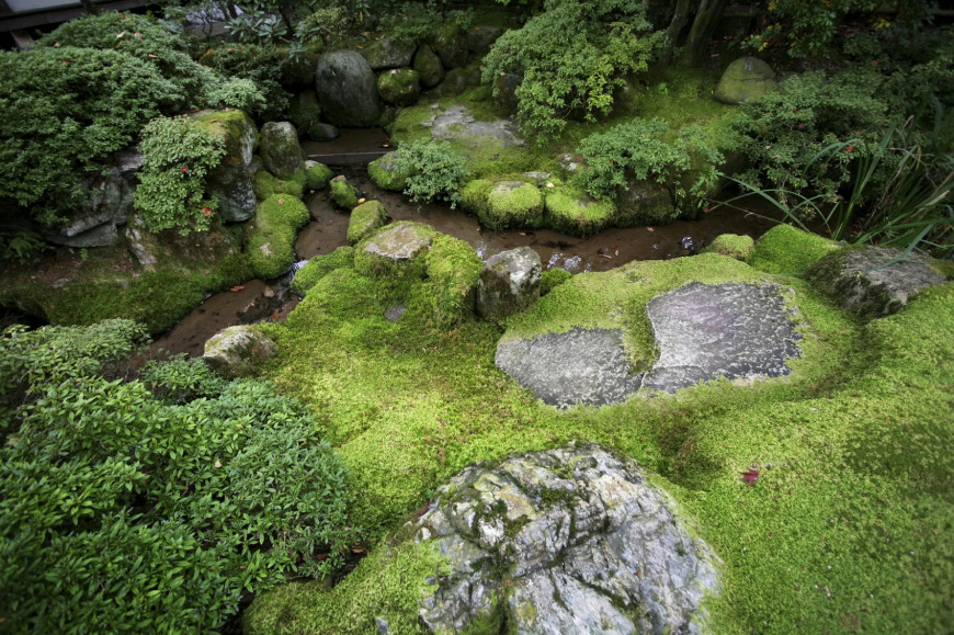 Moss can be a good element to bring out the sense of age to your garden. The idea of sabi is not just about a worn look but the image of age and time. Moss can influence that essence of time very well.