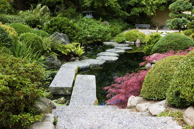 There are many ways to create paths over your water features. You can even blend some together. Stone steps are an excellent option and pair well with other methods.