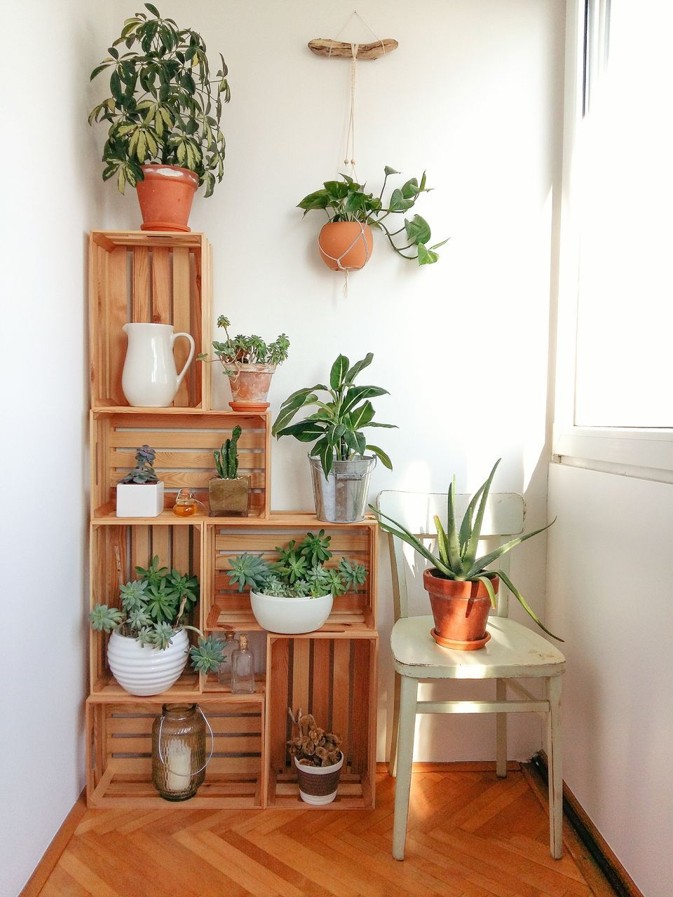 Cool Plant Stand Design Ideas for Indoor Houseplants ... on Hanging Plants Stand Design  id=73906