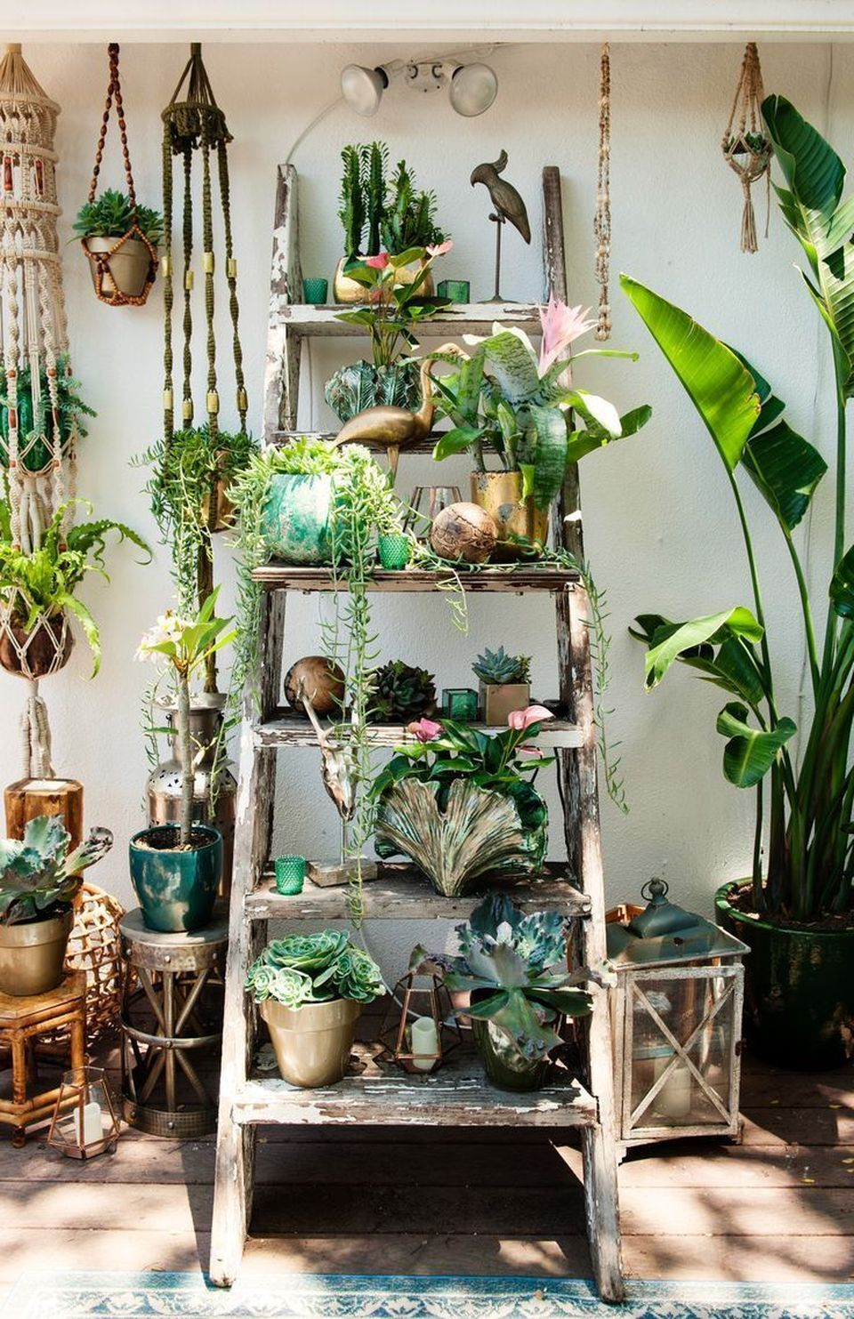 Cool Plant Stand Design Ideas for Indoor Houseplants ... on House Plant Stand Ideas  id=38783