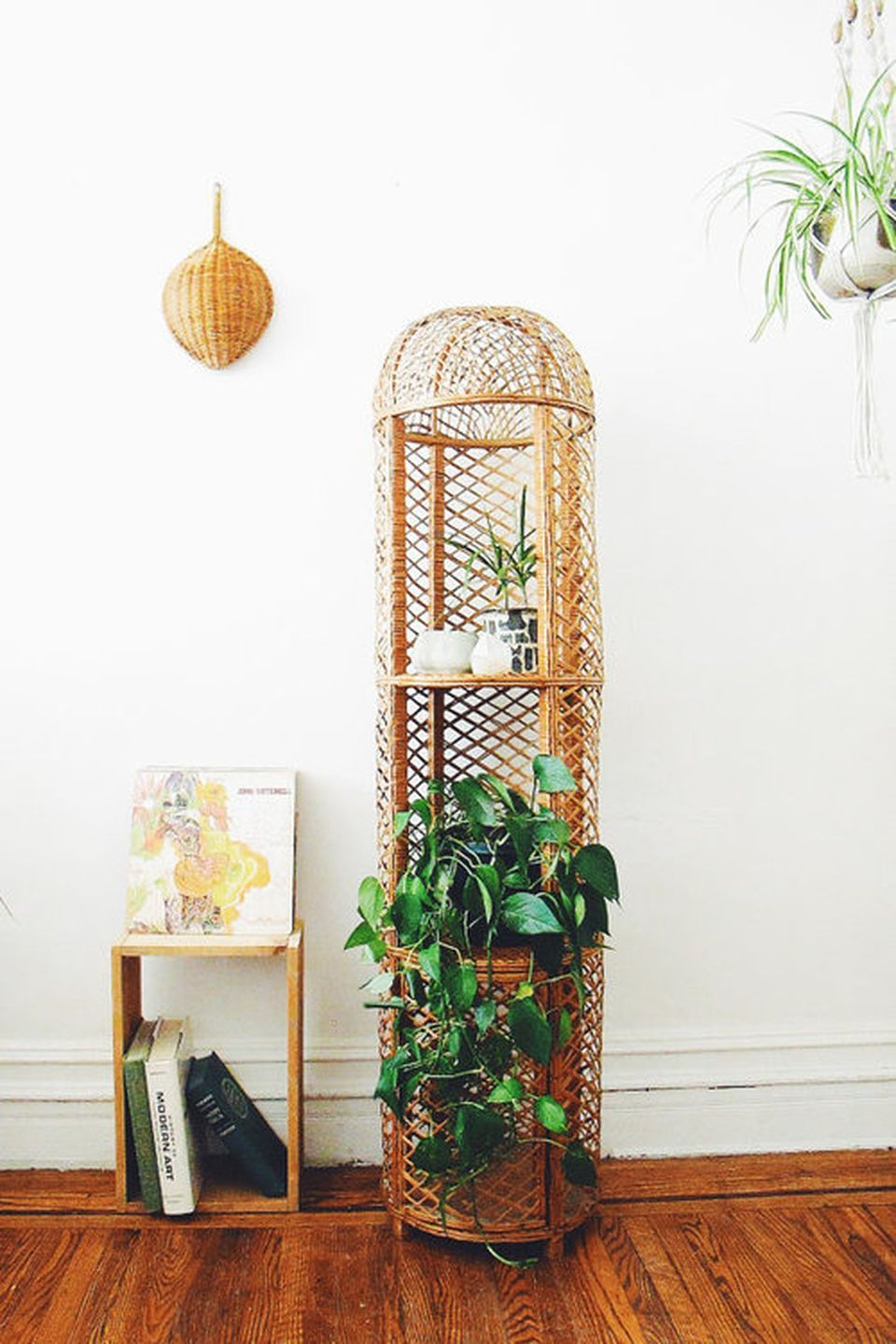 Cool Plant Stand Design Ideas for Indoor Houseplants ... on House Plant Stand Ideas  id=77168