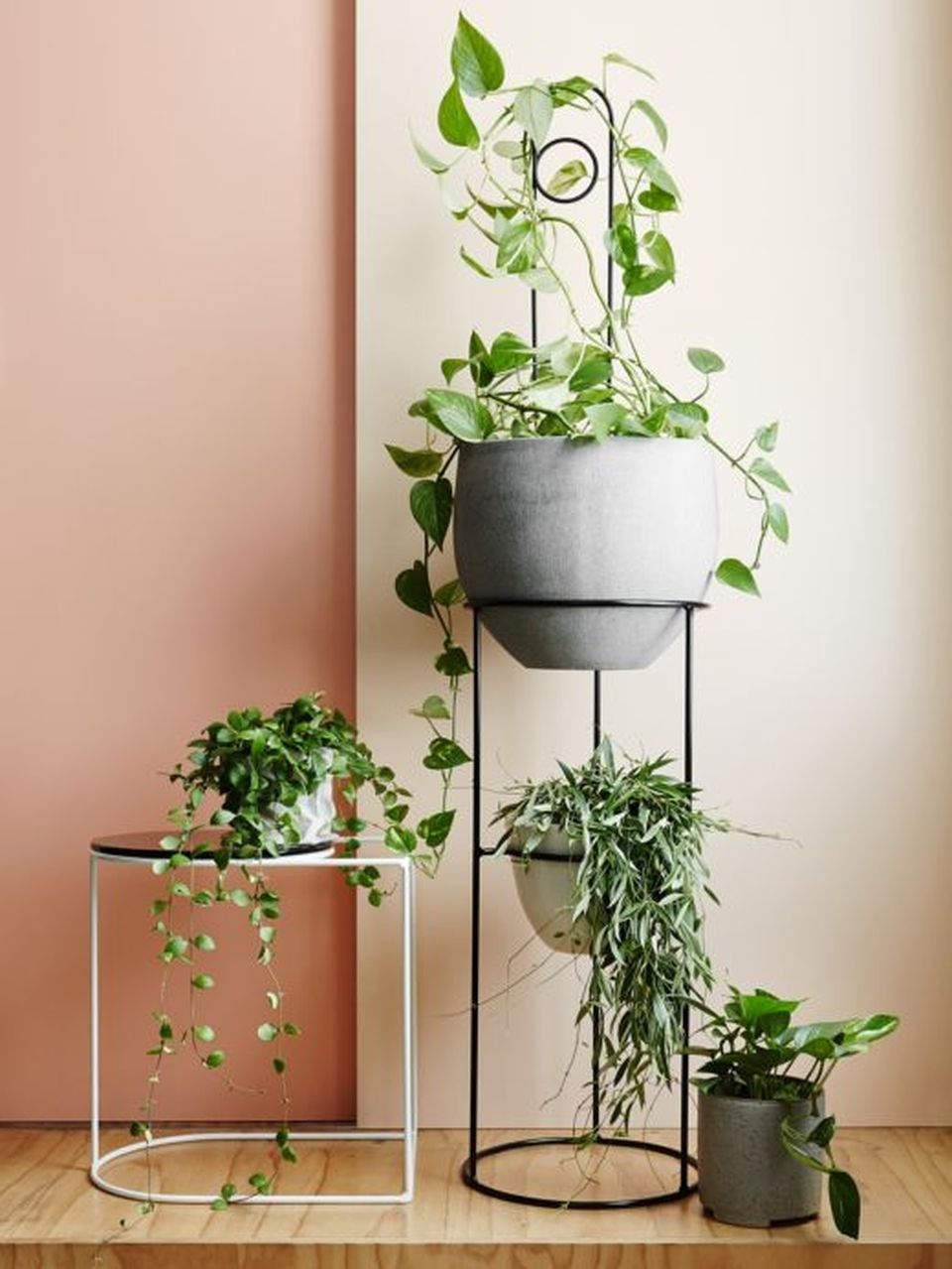 Cool Plant Stand Design Ideas for Indoor Houseplants ... on House Plant Stand Ideas  id=78972