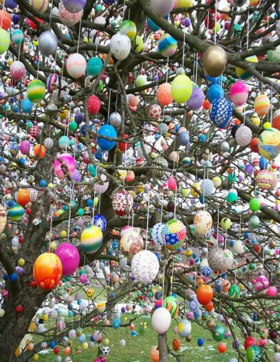 Germany- Easter egg tree