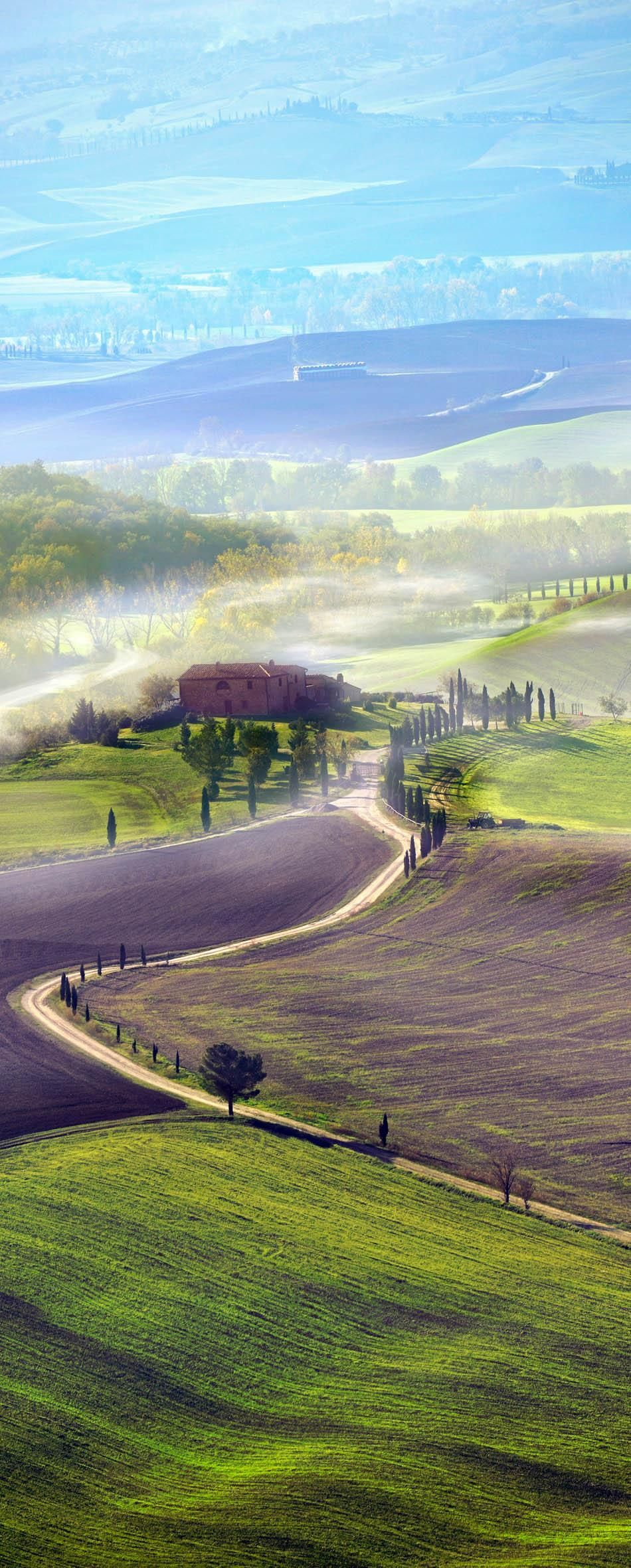 Countryside road in Tuscany, Italy | 23 Roads you Have to Drive in Your Lifetime