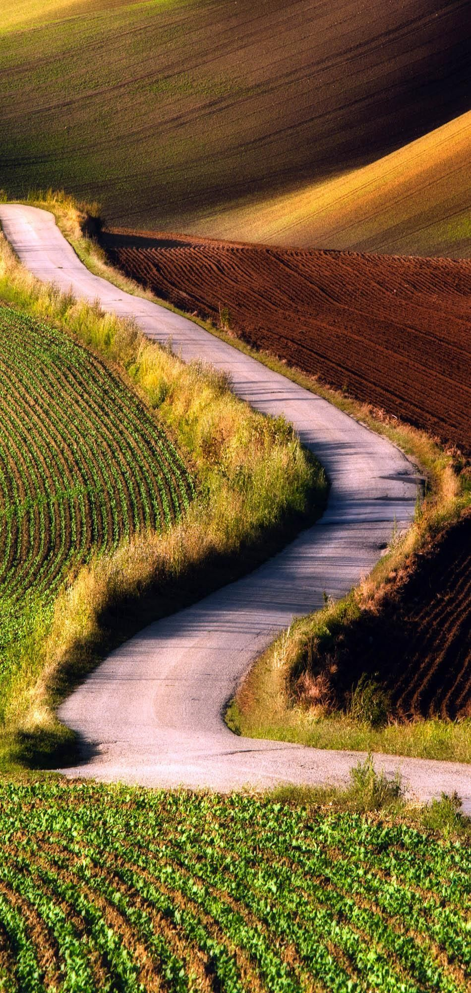 Scenic Road in Southern Moravia, Czech republic | 23 Roads you Have to Drive in Your Lifetime