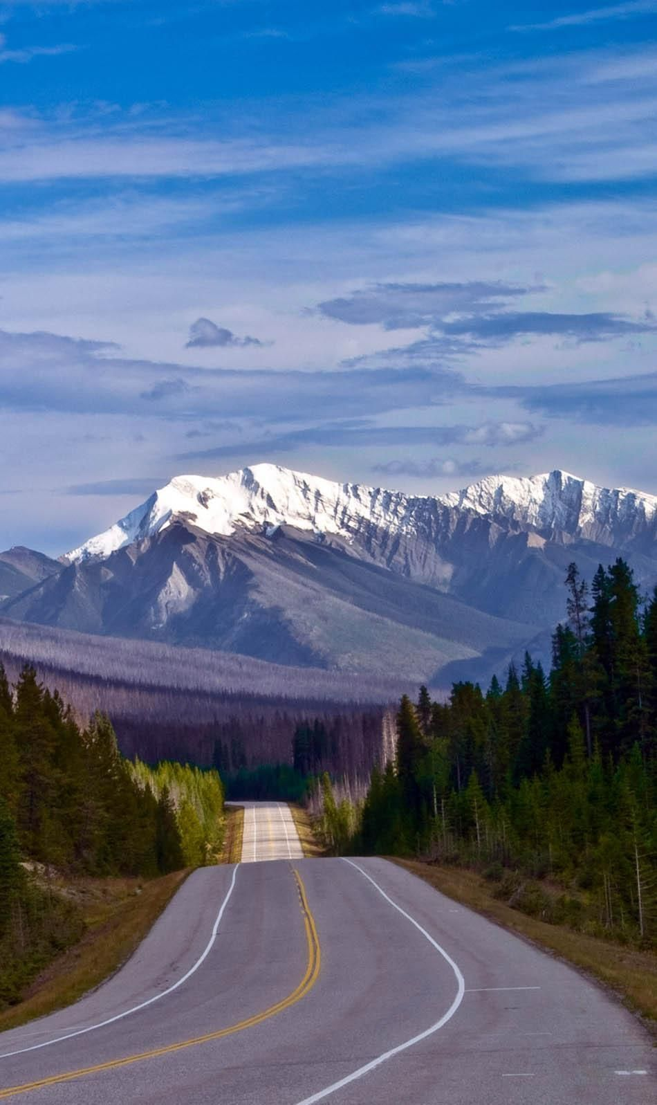 The Road to the Canadian Rockies, Kootenay National Park | 23 Roads you Have to Drive in Your Lifetime
