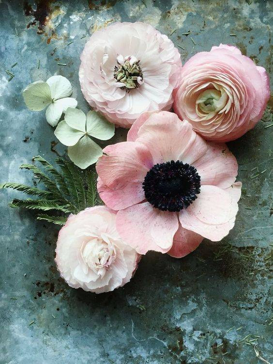 Spring Flower Arrangements pink poppies