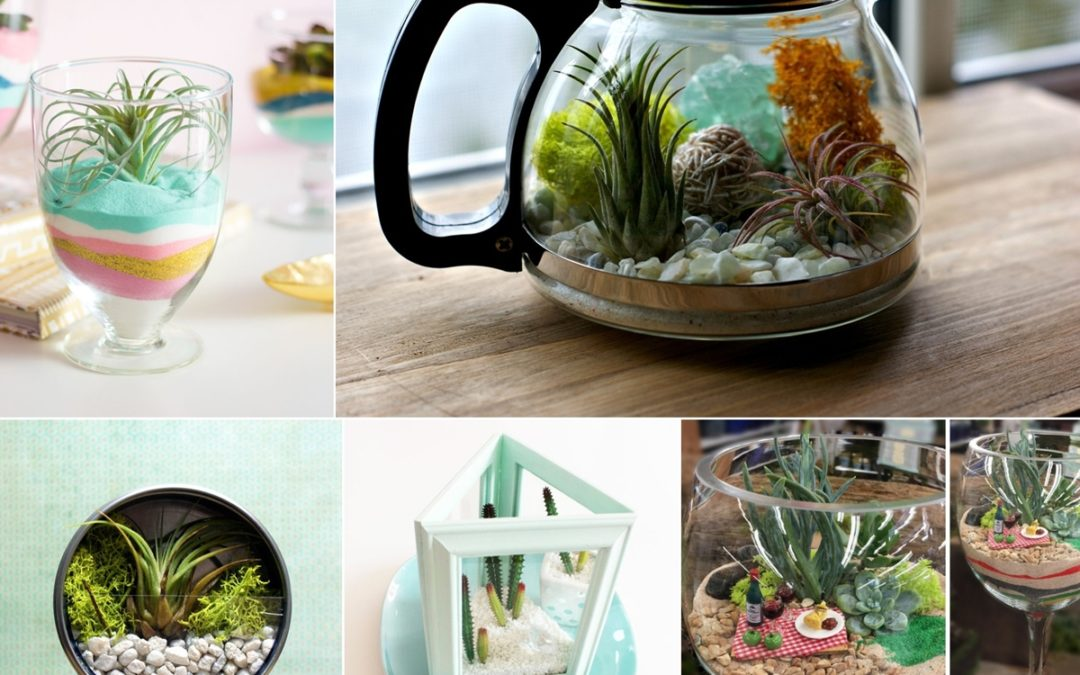 Beautiful DIY Terrarium Ideas